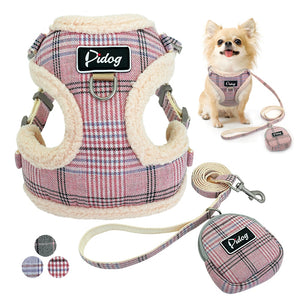 pink harness and leash with chihuahua wearing them in background