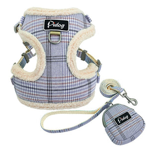 blue dog harness with leash