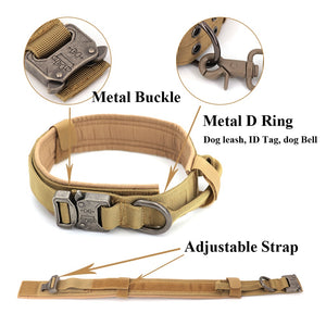 tan dog collar showing the D Ring, Buckle and adjustable strap features