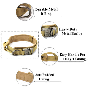 Tan dog collar showing the various features