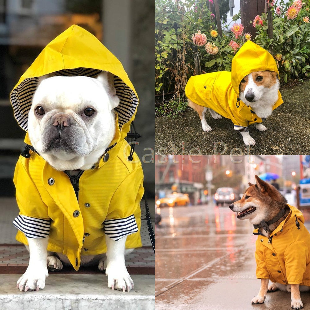 Lightweight Windbreaker Yellow Raincoat