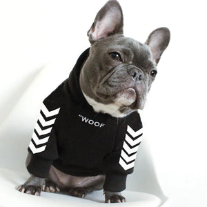 French bulldog wearing a hoodie that says woof on the front