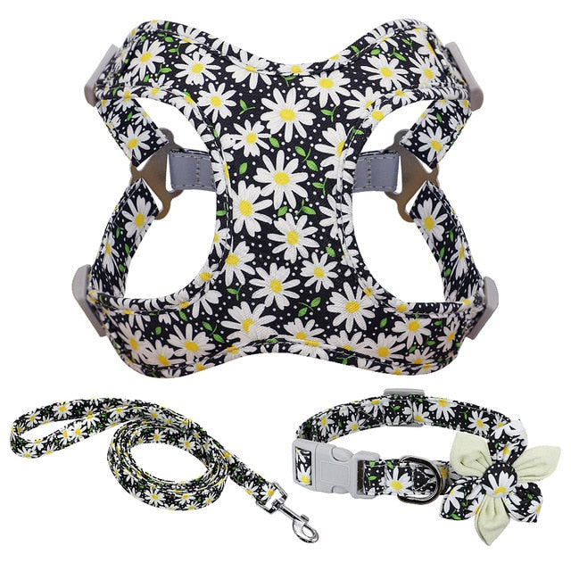 floral harness, leash and collar with a flower bow