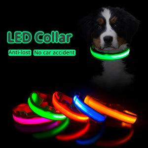 5 collars of different colours laid flat on each other glowing in the dark, with a dog above wearing a green glowing collar in the dark
