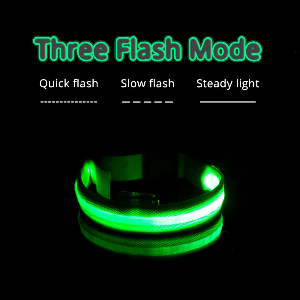 Green glow in the dark collar, with flash mode features displayed above: quick flash, slow flash, steady light