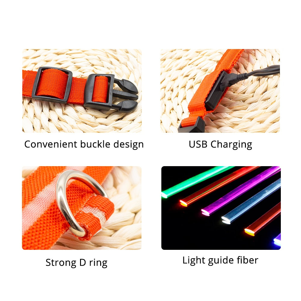4 images of collar features: convenient buckle design (buckle close up), usb charging (usb connection close up), strong D ring (D ring close up), light guide fiber (displaying 5 different colour options)