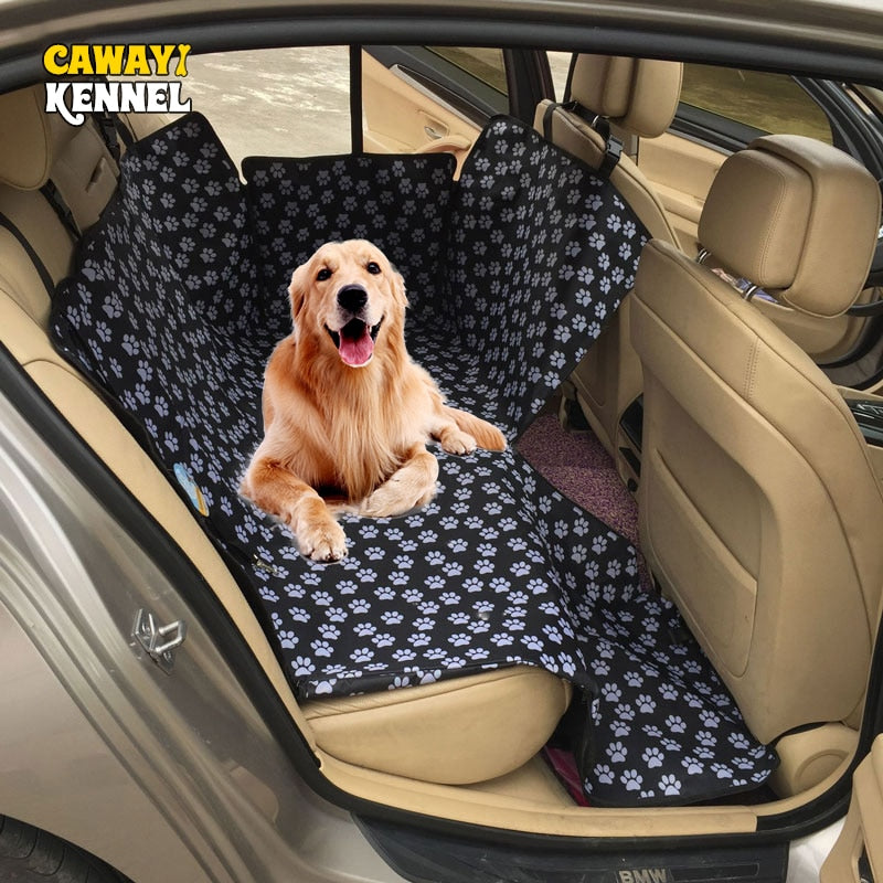 Golden retriever lying back in back seat of car with a seat cover underneath