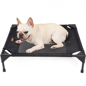 french bulldog lying a raised pet bed