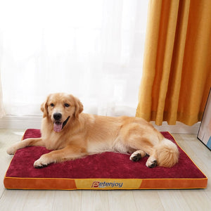 golden retriever lying on a thick red dog mat infront of a window