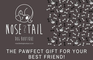 Nose 2 Tail Dog Boutique Gift Card (£20)