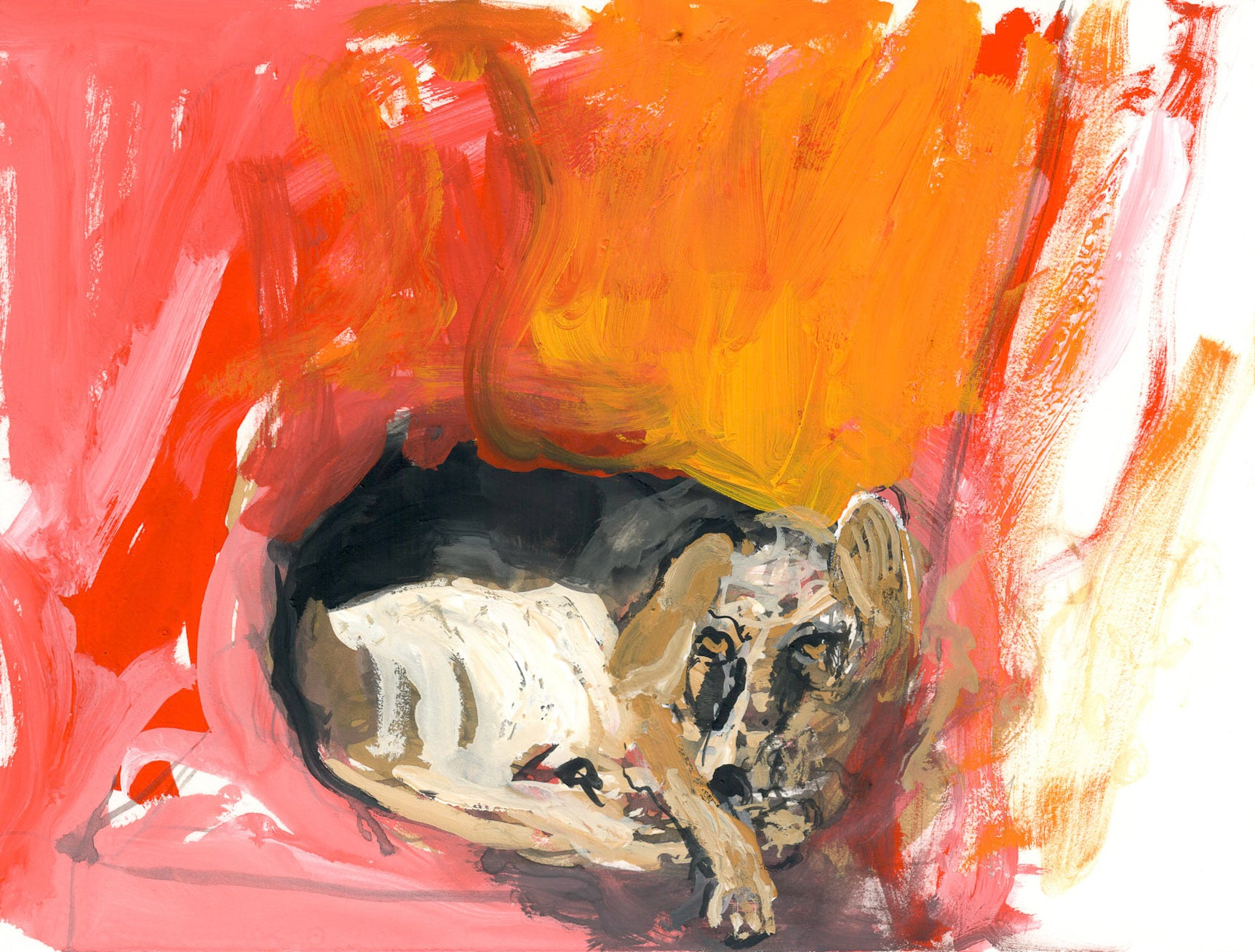 Sleepy Dog - Study 3 - Scary