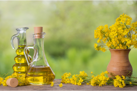 Is-Vegetable-Oil-the-Same-as-Canola-Oil