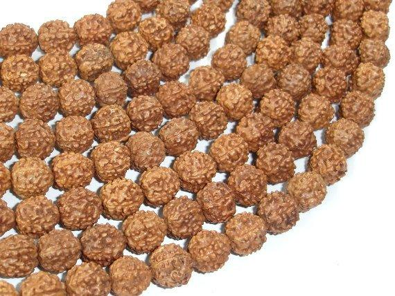 Rudraksha Beads, 9mm-9.5mm Round Beads-Ebeader