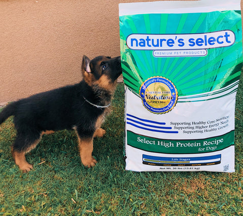 Nature's Select Puppy