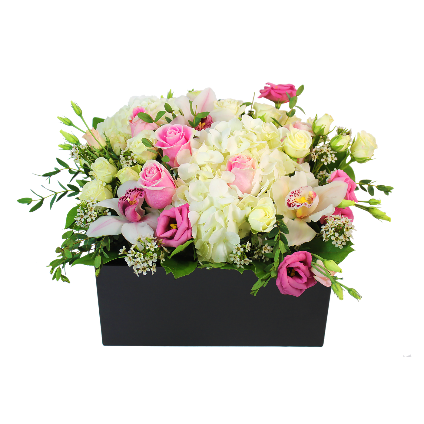 Hat Box Florals - Large