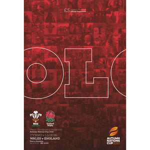 Wales vs England (Autumn Nations Cup)