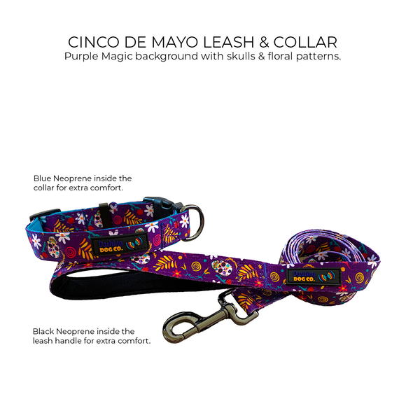 Cinco De Mayo - Leash