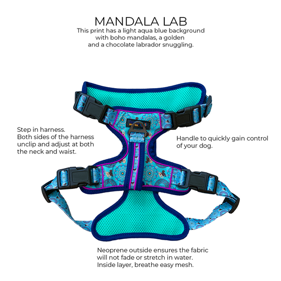 Mandala Lab - NO PULL Harness