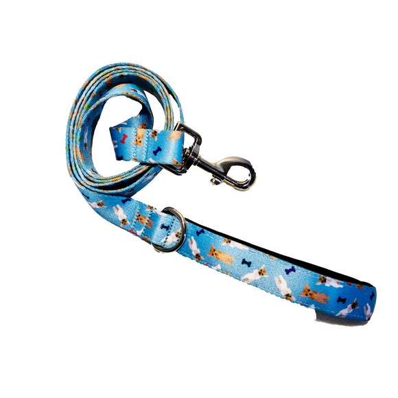 Chi Bones Baby Blue Leash