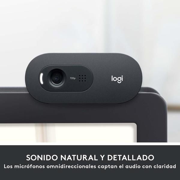 Webcam Logitech C505 Full HD Flash