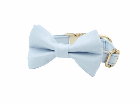 Blue Dog Bow Tie Collar