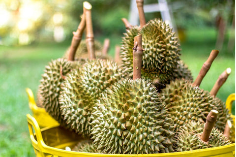 a basket of durians