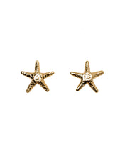 Load image into Gallery viewer, Manini Starfish Classic studs