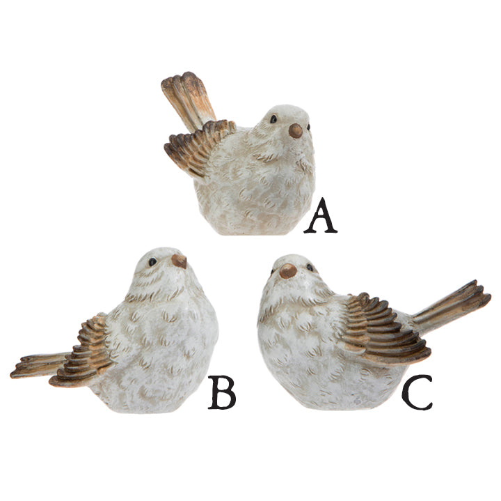 Three small bids with white bodies and ochre and brown wings and tails on a white background.  Birds are arranged in a triangle, the one on top is labeled A and has its tail pointed upward and is looking straight ahead.  B, down left,  has tail out straight and is looking up.  C, down right, is looking to the left and the tail is slightly raised.
