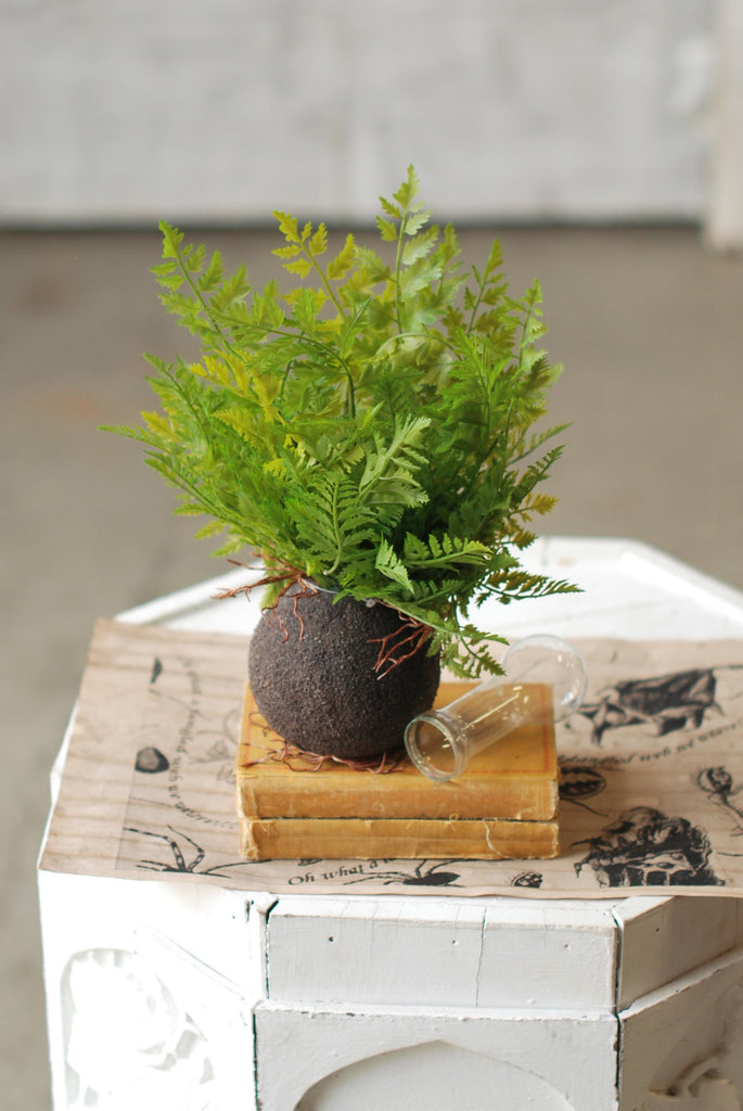 Faux lace fern with root ball, positioned on books on top of a white decorative pedestal.