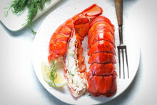 Load image into Gallery viewer, Maine Lobster Tails  - Twin Pack