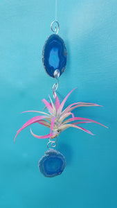 Blue Agate single with pink air plant