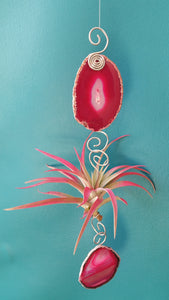 Pink Agate single with pink air plant
