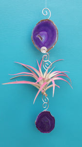 Purple Agate Single with pink air plant