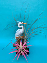 Load image into Gallery viewer, Small Heron Garden