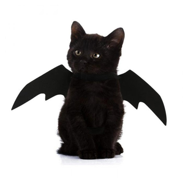 2019 New OLN Pet Dog Cat Bat Wing Cosplay Prop Halloween Bat Fancy Dress Costume Outfit Wings Cat Costumes Photo Props Headwear