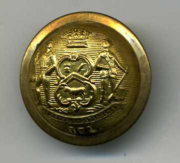 USA Delaware State Brass Button