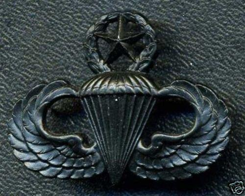 USA Master Parachutist Wing Badge (stamped S21 on back)