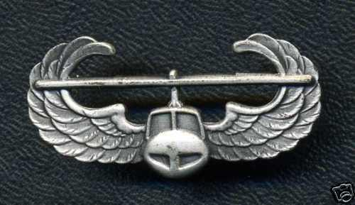USA Army Air Assault Badge (stamped D22 on back)