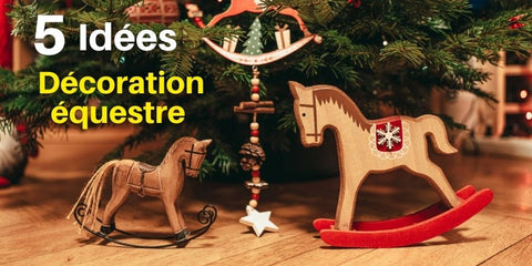 idees-decoration-equestre