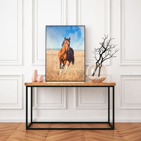 Poster cheval