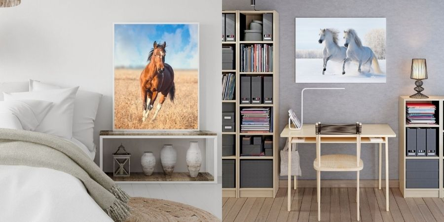 Collection poster cheval