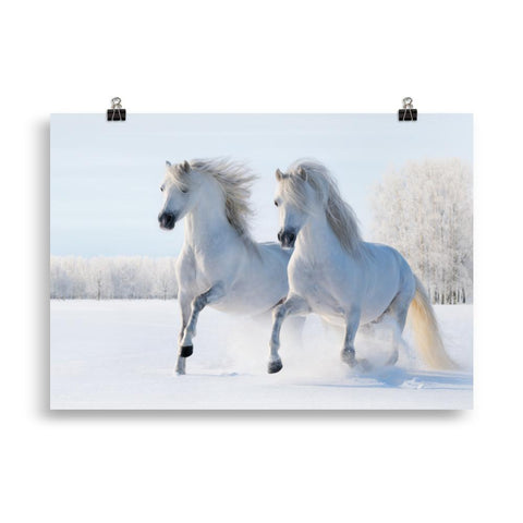 Poster cheval neige
