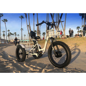 Emojo Caddy Fat Tire Electric Tricycle - 500W - Electric Whispering