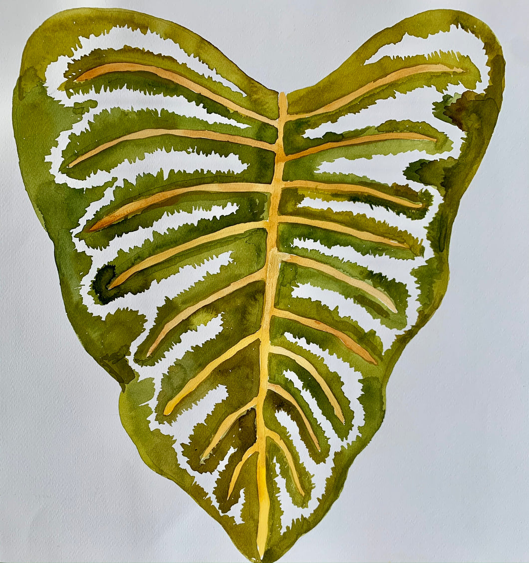 Big Tropical Leaf 18x18