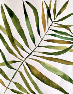 Focused Palm Study 23.5x30