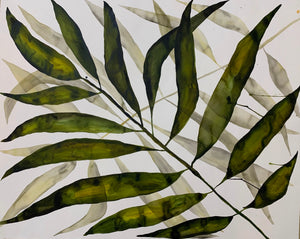 Palm and Shadow 44x55