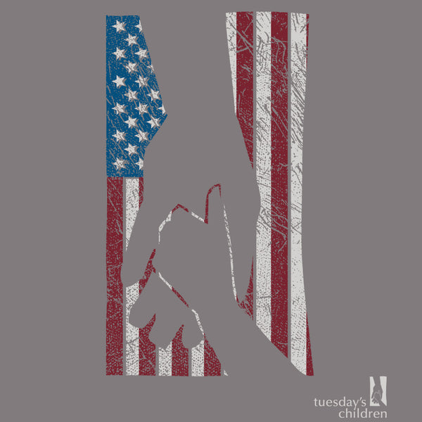 Preview of imprint showing Tuesday's Children Holding Hands logo overlaid with distressed American Flag motif in muted tones.  Full Tuesday's Children logo is offset in bottom right.