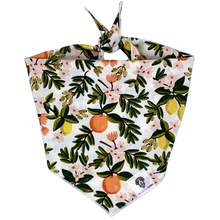Load image into Gallery viewer, Citrus floral cream dog bandana