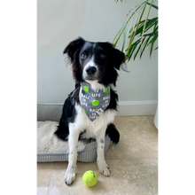 Load image into Gallery viewer, Dog wearing ball is life gray tennis slip on dog bandana