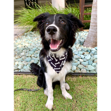Load image into Gallery viewer, Dog wearing black and white bone print bandana
